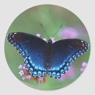 red-spotted purple classic round sticker