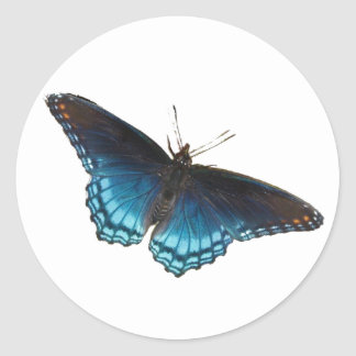 Red-spotted Purple Sticker