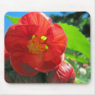 red spring blossoms mouse pad