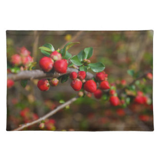 Red Spring Buds Cloth Placemat