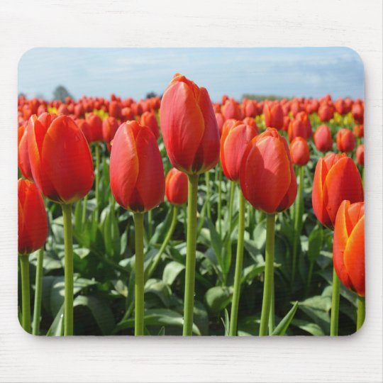 Red spring tulips print mousepad