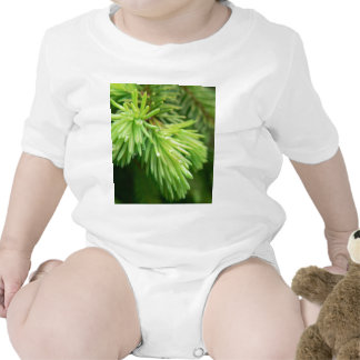 Red Spruce Sprouts Tree Romper