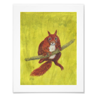 Red Squirrel 2 painting Photographic Print