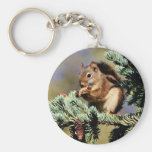 Red Squirrel Basic Round Button Keychain