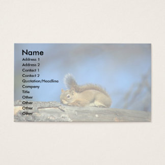 Red Squirrel Business Card