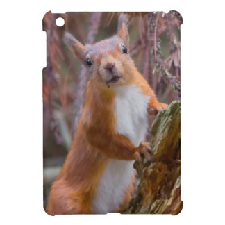 Red squirrel case for the iPad mini