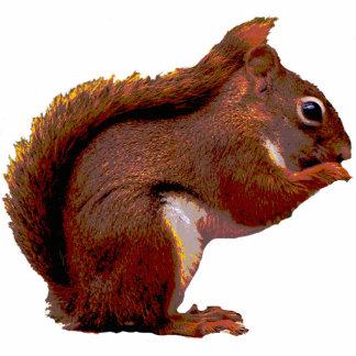 Red Squirrel Christmas Hanging Acrylic Cutout