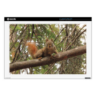 """Red Squirrel Decals For 17"""" Laptops"""