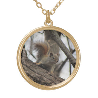 Red Squirrel Gold Plated Necklace