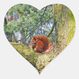 Red Squirrel in Copenhagen, Denmark Heart Sticker