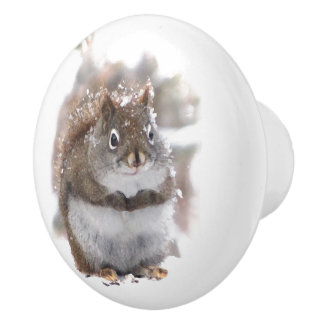 Red Squirrel in Snow Ceramic Knob