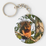 Red Squirrel Key Chains