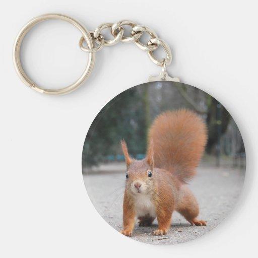 Red Squirrel Keychain