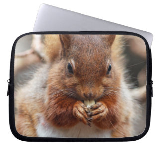 red squirrel laptop sleeve