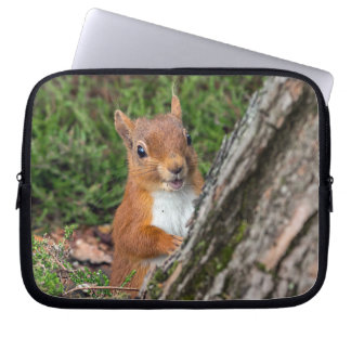 red squirrel laptop sleeves