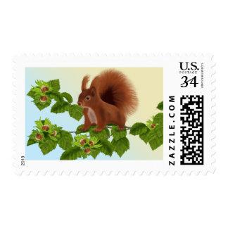 Red Squirrel on hazelnut twig Postage