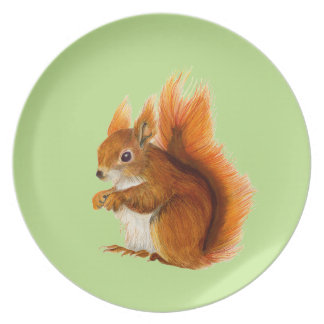 Red Squirrel Painted in Watercolor Wildlife Art Dinner Plate
