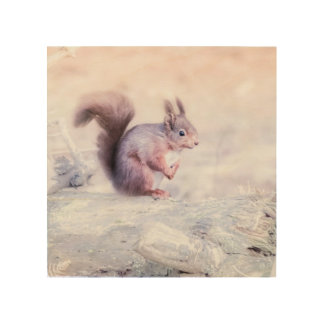 Red Squirrel picture Wood Wall Art