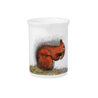 Red Squirrel pine cone Beverage Pitcher