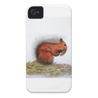 Red Squirrel pine cone iPhone 4 Case