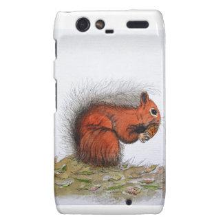 Red Squirrel pine cone Droid RAZR Case