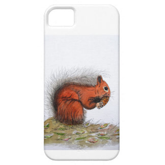 Red Squirrel pine cone iPhone 5 Cover