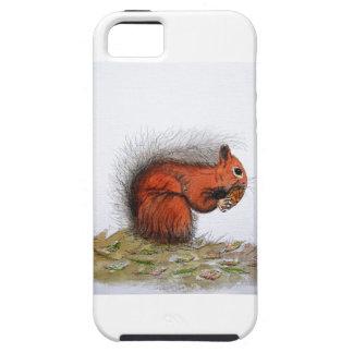 Red Squirrel pine cone iPhone SE/5/5s Case