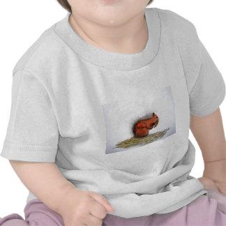 Red Squirrel pine cone Tshirts