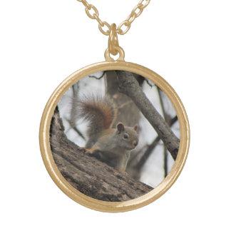 Red Squirrel Round Pendant Necklace