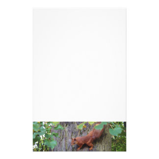 Red Squirrel Stationery