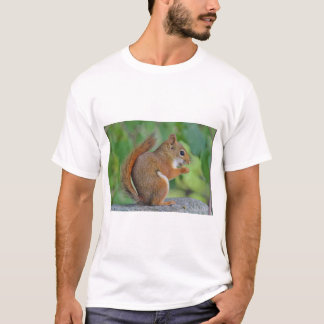 Red squirrel T-Shirt
