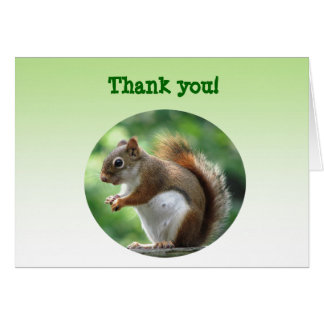 Red Squirrel Thank You! Stationery Note Card