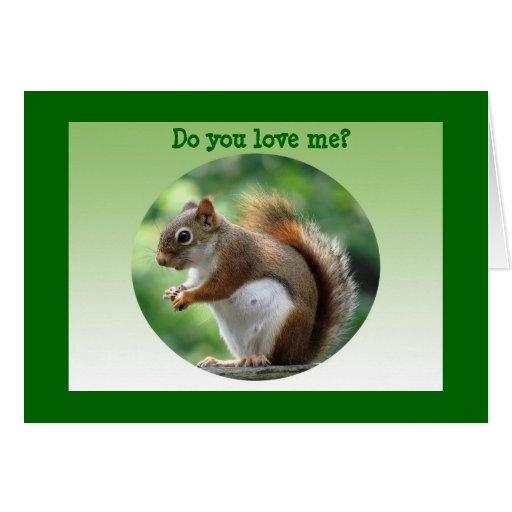 Red Squirrel Valentine Card