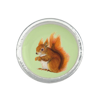 Red Squirrel Watercolor Painting Gifts and Bags Rings