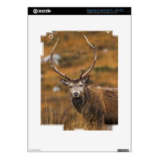 Red Stag iPad 3 Skin