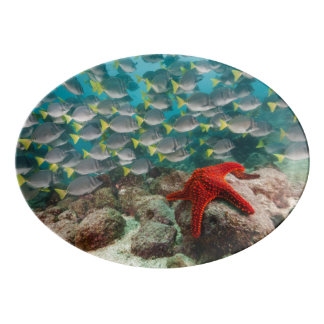 Red Starfish And Yellowtail Surgeonfish Porcelain Serving Platter
