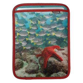 Red Starfish And Yellowtail Surgeonfish Sleeve For iPads