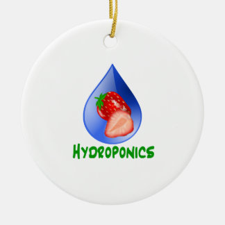 Red Strawberries Green text blue drop hydroponics Double-Sided Ceramic Round Christmas Ornament