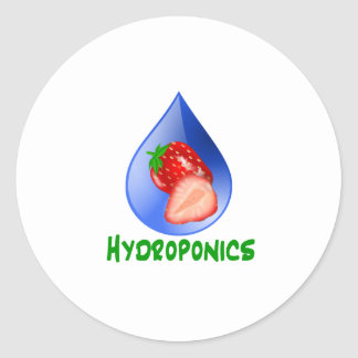 Red Strawberries Green text blue drop hydroponics Round Stickers