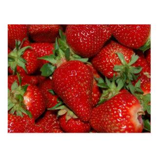 Red Strawberries Postcard