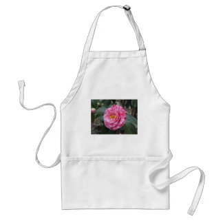 Red streaked white flower of Camellia japonica Adult Apron