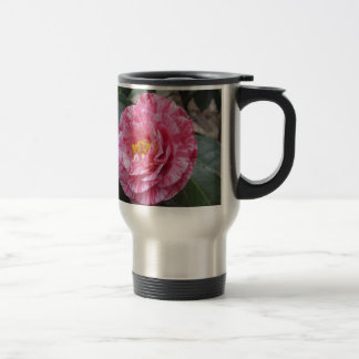 Red streaked white flower of Camellia japonica Travel Mug