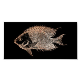 Red Stripe Fish Sea Ocean Black Rose Gold Blush Poster