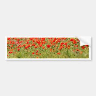 red summer flower bumper sticker