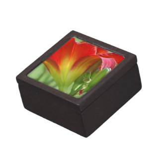 Red Summer Lily  Jewelry Box