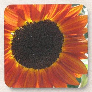 Red Sunflower Cork Coasters