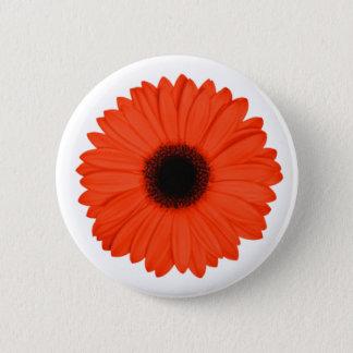 Red-Susan flower Button