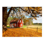 Red Swedish House Amongst Autumn Leaves Postcard