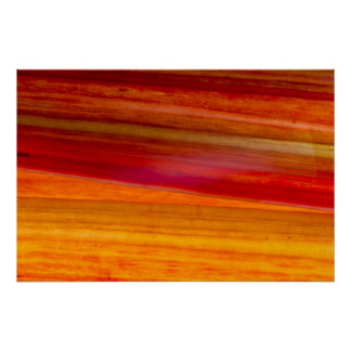 Red Swiss Chard Stems Poster