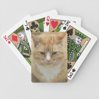 Red Tabby Bicycle Playing Cards